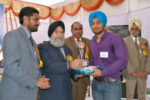 Annual Prize Distribution Function